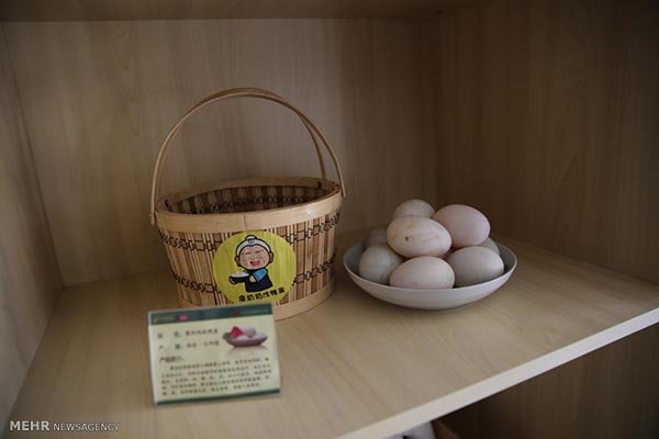 فروش آنلاین تخم اردک