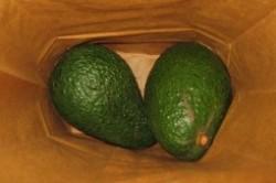 راهکار تسریع رسیدن میوه نارس