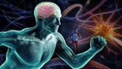 گلوتامات چیست و ورزش چه تاثیری در تولید آن دارد؟