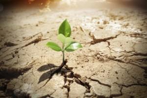 hope-and-optimism