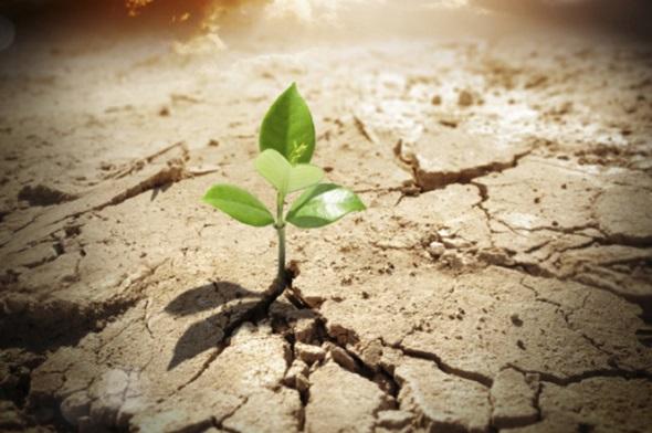 hope-and-optimism,امیدواری چیست