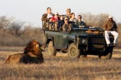 معرفی پارک ملی کروگر در آفریقای جنوبی