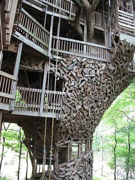 بزرگترین خانه درختی دنیا