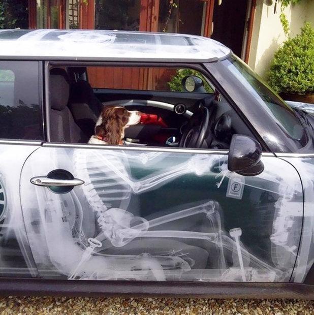 نقاشی روی بدنه ماشین