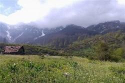 روستای برنت سوادکوه؛ روستایی بکر در مازندران