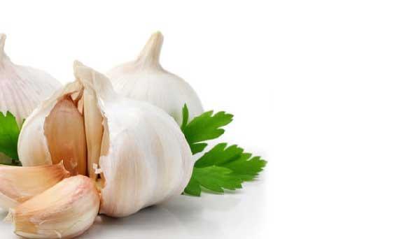 garlic-benefits