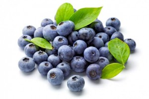 زغال اخته blueberries