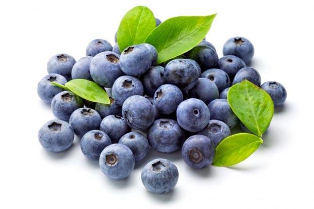 زغال اخته blueberries