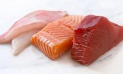 کالری انواع ماهی
