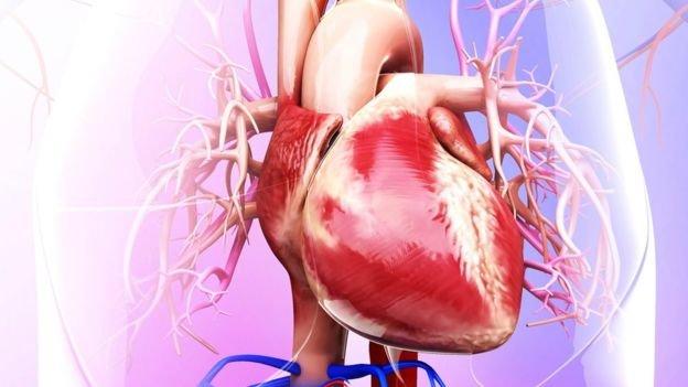 پیشگیری از بیماری قلبی