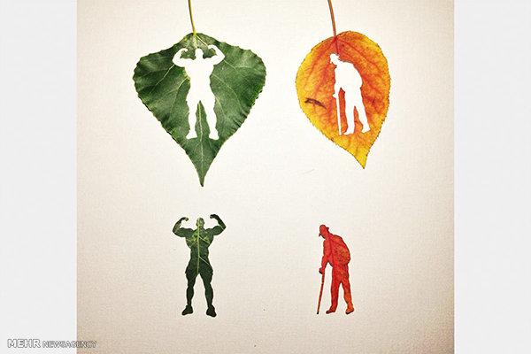 هنرنمایی روی برگ درختان پاییزی
