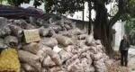 خرید 32 تن سیب زمینی برای کمک به کشاورز چینی