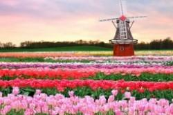 جاذبه های توریستی و جاهای دیدنی هلند
