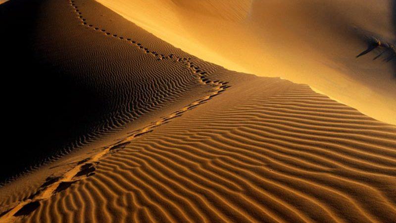 lut-desert-3