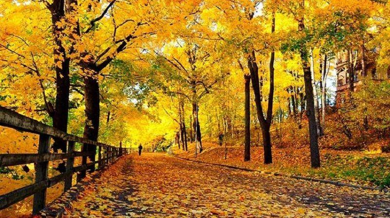 Iran-fall