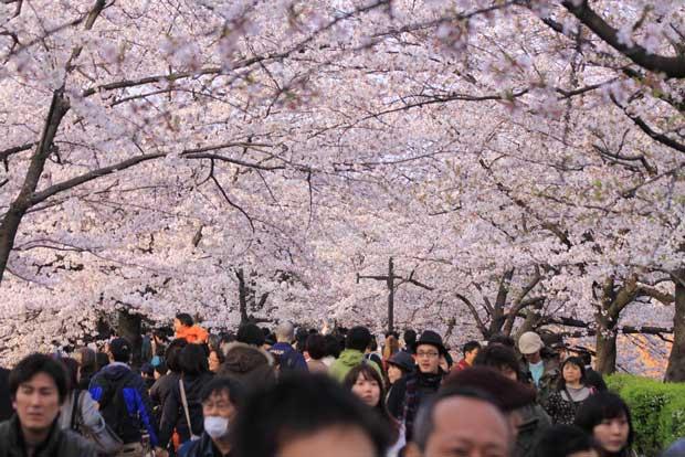 پارک Ueno