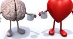 برندسازی عاطفی چیست و چگونه بر مشتری اثر میگذارد؟