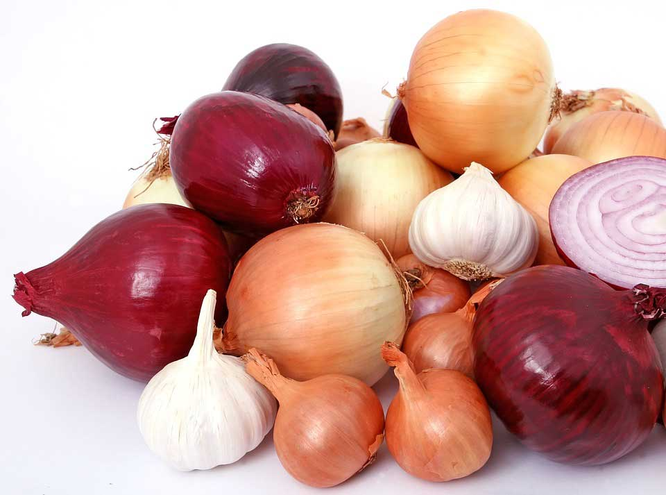 8 Great Health Benefits Of Onions