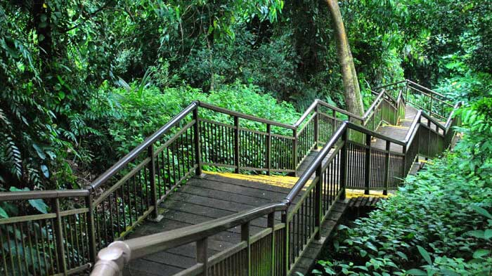hiking-trail-at-mount-faber