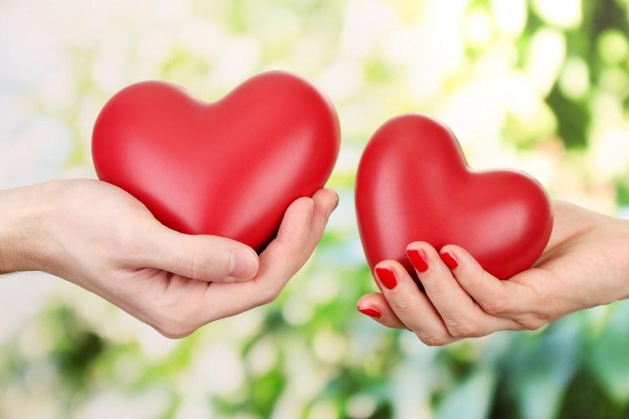 عادی شدن عشق در روابط زناشوی