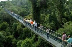 12 جاذبه دیدنی و مجانی در سنگاپور