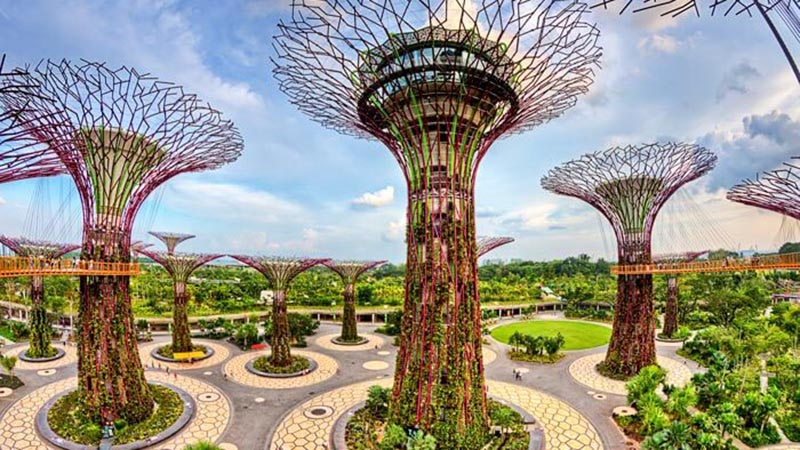supertrees-at-gardens-by-the-bay