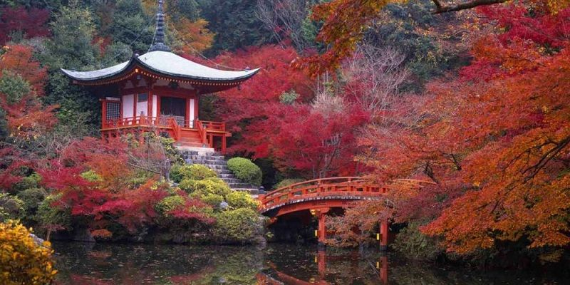 temple-in-japanese-kyoto-gardens