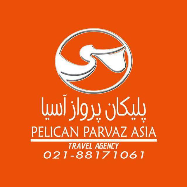 pelicanparvaz