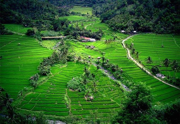 زیباترین سواحل اندونزی,جزیره بالی-bali