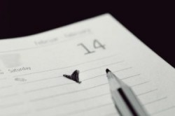 شرایط ایده آل برای ازدواج چیست؟