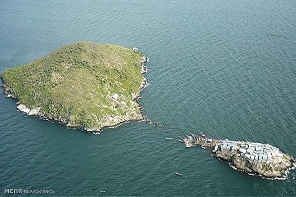 پرتراکمترین جزیره جهان