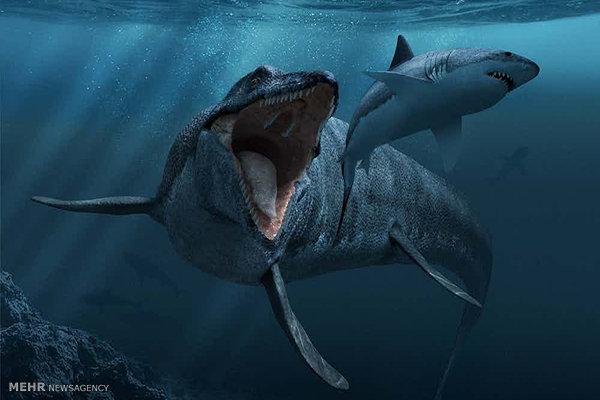بزرگترین حیوانات تاریخ
