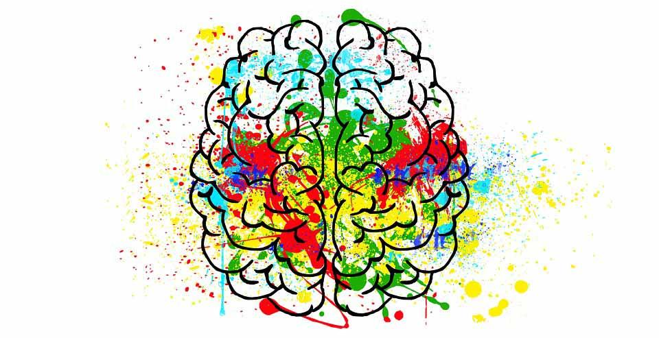 غذاهای تقویت کننده مغز