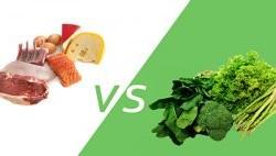 پروتئین حیوانی یا گیاهی؟ چه تفاوت هایی دارند؟