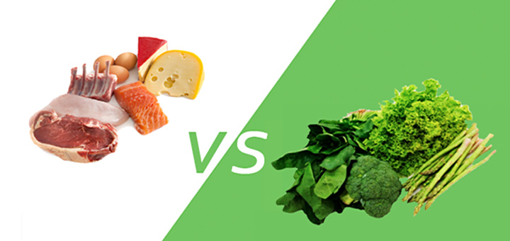 Plant-Protein-Differs-from-Animal-Protein