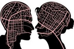 مغز زنان و مردان از نظر عملکرد و طرز فکر چه تفاوتی دارند؟
