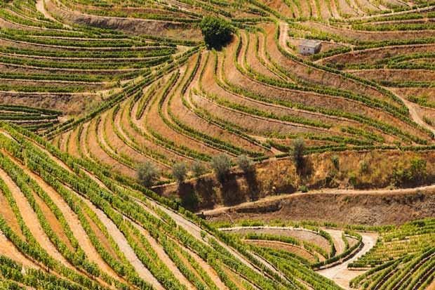 جاهای دیدنی شمال پرتغال - ۱۰ جاذبه گردشگری کشور پرتغال
