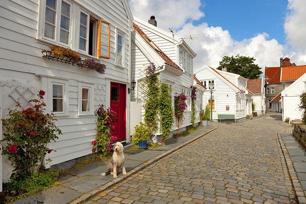 شهر استاوانگر نروژ