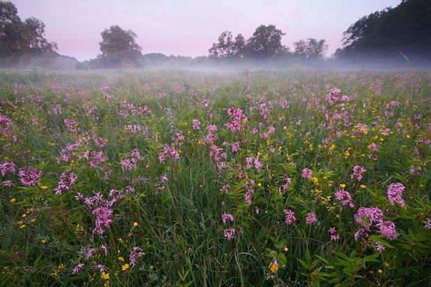 دیدنی های استونی,پارک ملی-soomaa_national_park