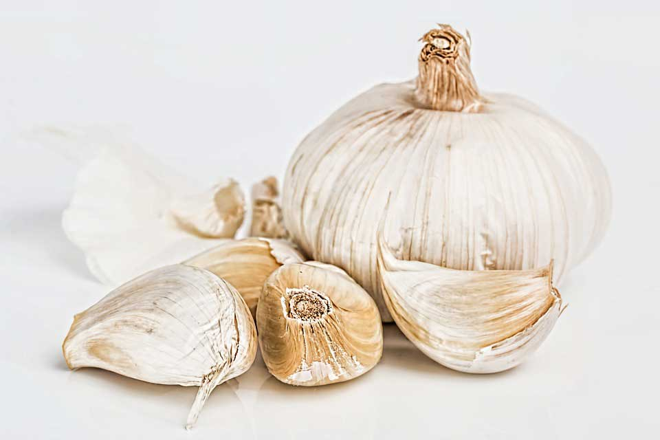 Avoid These 6 Common Mistakes When Using Garlic As an Antibiotic