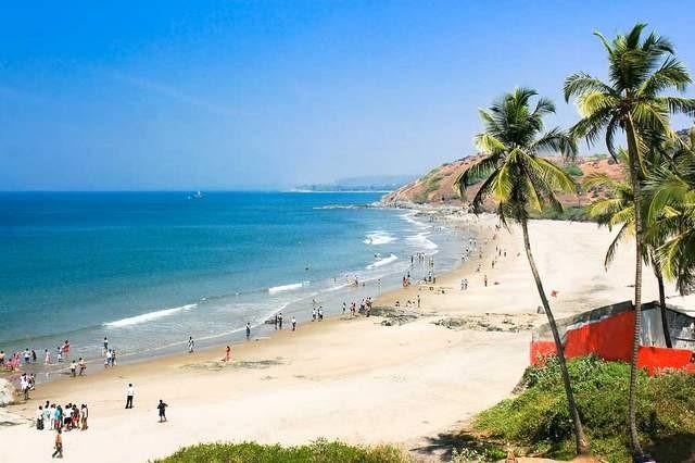 goa ساحل کالانگوت