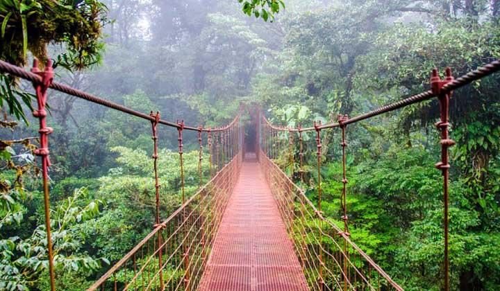 جاهای دیدنی کاستاریکا - منطقه حفاظت شده مونته ورده-Monteverde-Reserve