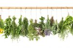 Fresh-Herbs-Hanging