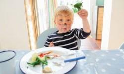 دلیل عادت های بد غذایی کودکان