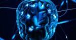 دلیل بزرگ بودن مغز انسانها چیست؟