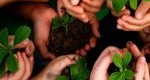 روانشناسی حفاظت از محیط زیست