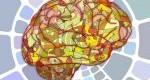 مزایای حل پازل برای سلامت مغز