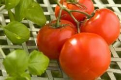 برای سلامت قلب چه غذاهایی بخوریم؟