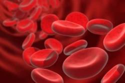 با کم خونی قبل از بارداری چه کنیم؟