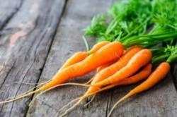 خواص روغن تخم هویج برای پوست صورت